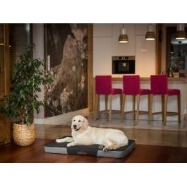 Premium čiužinys šunims (juodas/pilkas Ekolen)