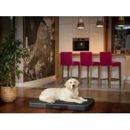Premium čiužinys šunims (juodas/juodas Ekolen)