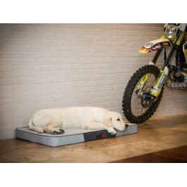 Premium čiužinys šunims (pilkas Ekolen/pilka Eco oda)