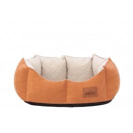 York premium guolis šunims oranžinis